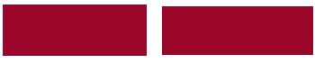 CeIS – don Mario Picchi logo